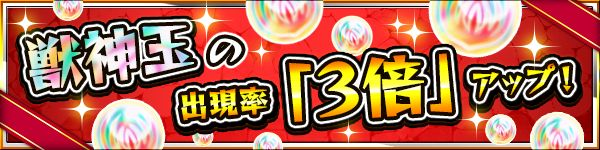 20150108-MS-2000-10